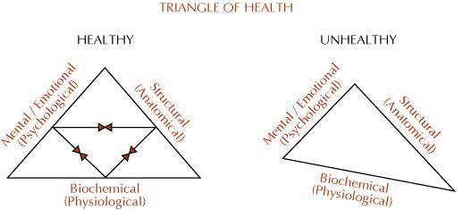 Triangle of Health Jul2014